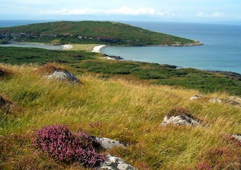 REDT is testing a vanadium redox battery on Gigha. Is more investment needed for energy storage of renewable energy in Scotland?
